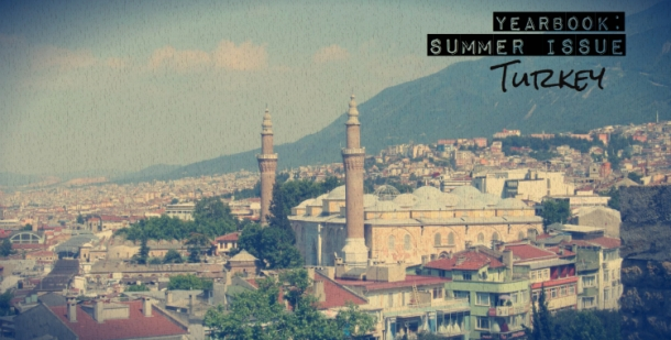 turkey_header